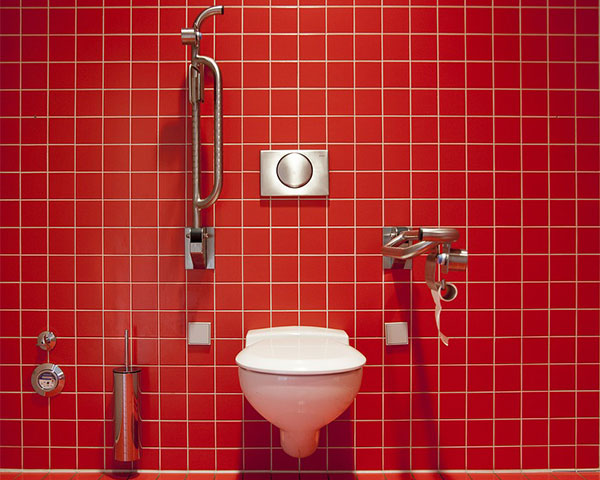 inclsuive toilet with red tiles and accessories
