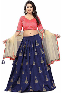 A model wearing a navy blue coloured choli with gold flowers and blouse having a combination of pink, blue and beige colours. She is also wearing a beige coloured dupatta.