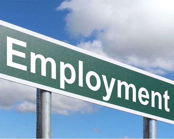 Green board with the word employment